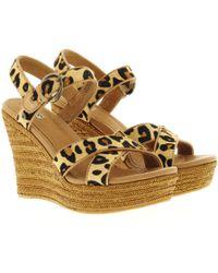 UGG - W Jazmine Calf Hair Leopard Chestnut Leopard - Lyst