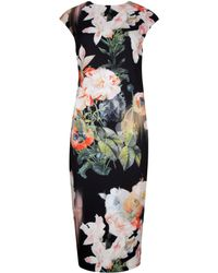 Ted Baker Candiss Opulent Bloom Print Dress - Lyst
