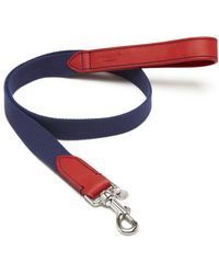 Mulberry 3Cm Dog Lead blue - Lyst