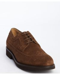 Tod's Tobacco Suede Tooled Wingtip Lace Up Oxfords - Lyst