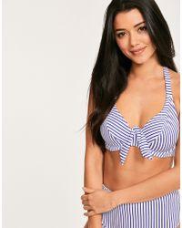 Freya - Totally Stripe Underwired Banded Halter Bikini Top - Lyst