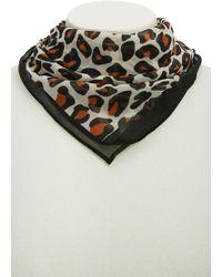 Forever 21 - Chiffon Leopard Print Scarf - Lyst