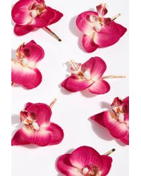Free People - Wild Orchid Pins By Gen3 - Lyst