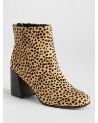 630e6f90e295 Lyst - Kate Spade Orton Cheetah-print Booties in Black