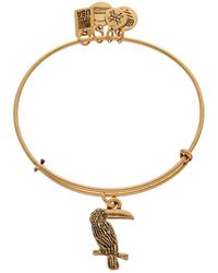 ALEX AND ANI - Team Usa Toucan Expandable Bracelet - Lyst