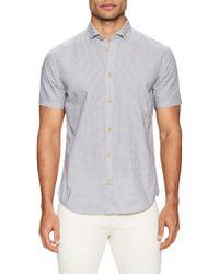 Color Siete - Murray Cotton Printed Sportshirt - Lyst