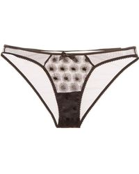 L'Agent by Agent Provocateur - Casie Mini Brief - Lyst