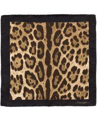 Dolce & Gabbana - Leopard Print Pocket Square - Lyst
