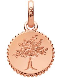 Links of London - Rose Gold Tree Of Life Charm - Lyst