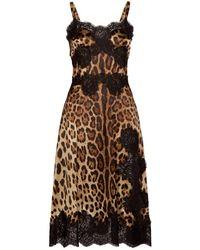 Dolce & Gabbana - Leopard Print Flared Midi Dress - Lyst