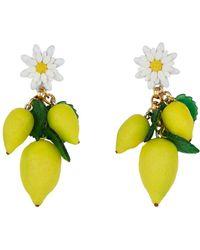Elizabeth Cole - Thaddea Lemon And Daisy Earrings - Lyst