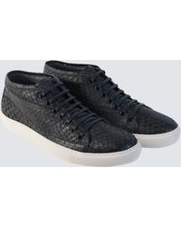 Hawes & Curtis - Lace Up Black Trainer Size 6 Suede Curtis - Lyst