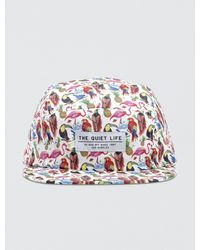 The Quiet Life - Birds Of Paradise 5 Panel Camper Cap - Lyst
