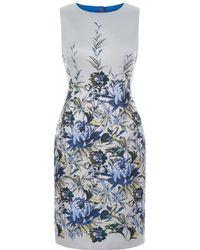 Hobbs - Royal Chrysanthemum Shift Dress - Lyst