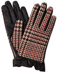 Hobbs - Multicoloured 'mia' Gloves - Lyst