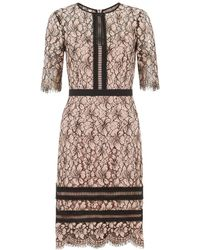 Hobbs - Penny Floral Lace Dress - Lyst