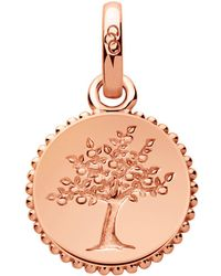 Links of London - Amulet Tree Of Life Charm - Lyst