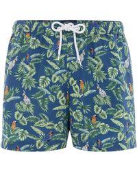 Criminal - Men's Parrot And Palm Leaf Print Swim Shorts - Lyst