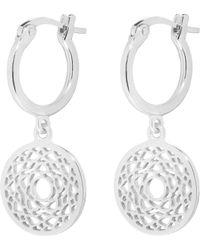 Daisy London - Echk1007 Ladies Earrings - Lyst
