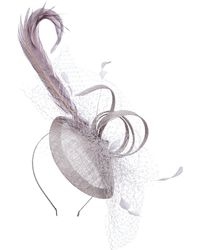 Suzanne Bettley - Veiling And Quill Teardrop Fascinator - Lyst