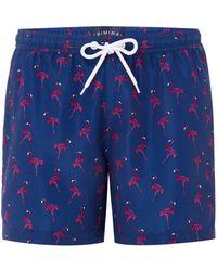 Criminal - Men's Hand Drawn Flamingo Print Swim Shorts - Lyst