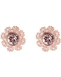 Ted Baker - T15842416 Daisy Lace Stud Earrings - Lyst