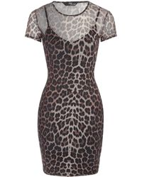 Jane Norman - Animal Print Mesh Dress - Lyst