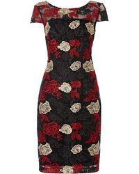 Shubette | Cap Sleeve Dress With Floral Illusion | Lyst