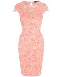 Jane Norman - Scallop Lace Bodycon Dress - Lyst