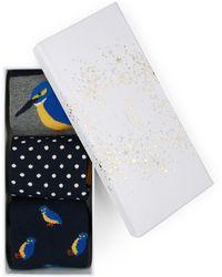 Hobbs - Kingfisher Sockset - Lyst