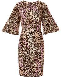 Adam Lippes - Flutter Sleeve Leopard Dress - Lyst