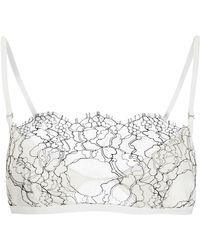 fb05a0623 Dion Lee Trace Lace Bandeau Bra in Black - Lyst