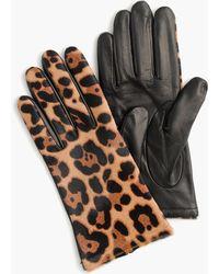 J.Crew - Italian Leather Haircalf Tech Gloves - Lyst