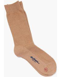 Druthers - Pique Crew Socks - Lyst