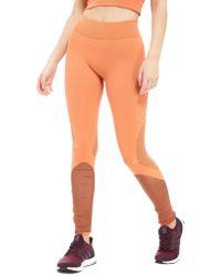 adidas - Warp Knit Tights - Lyst