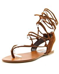 Steve Madden | Walkitt Women Us 8 Brown Gladiator Sandal | Lyst