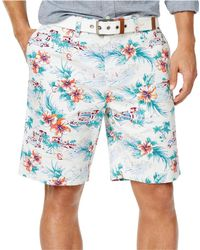 Tommy Hilfiger - Let's Go For A Drive Casual Chino Shorts - Lyst