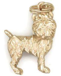 Donna Pizarro Designs - 14kt Yellow Gold Brussels Griffon Charm - Lyst