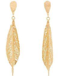 Amazona Secrets - 18kt Gold Ox Paw Leaf Earrings - Lyst
