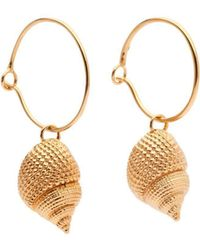 Susan Driver - Yellow Gold Plated Oceania Whelk Hoops - Lyst