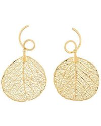 Amazona Secrets - 18kt Gold Natural Arabesque Savannah Leaf Earrings - Lyst