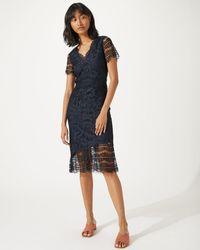 Jigsaw - Lace Overlay Dress - Lyst