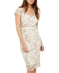 Phase Eight - Lottie Lace Dress - Lyst