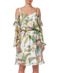 Adrianna Papell - Botanical Printed Ruffle Blouson Dress - Lyst