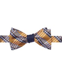 Jos. A. Bank - Signature Gold Collection Plaid Reversible Double Bow Tie Clearance - Lyst