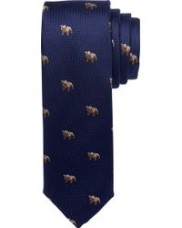 Jos. A. Bank | 1905 Collection Bulldog Tie | Lyst