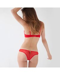 Mimi Holliday by Damaris - Hide And Seek Thong - Lyst