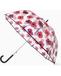 Kate Spade Bubble Umbrella