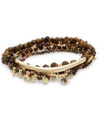 Kendra Scott - Supak Gold Beaded Bracelet Set In Brown Tigers Eye - Lyst