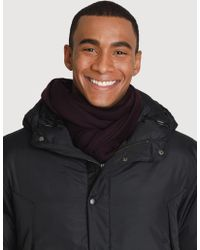 Kit and Ace - Merino Scarf - Lyst